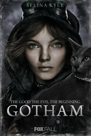 Gotham 1350x2000
