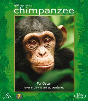 Chimpanzee 1550x1789