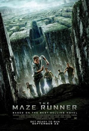 The Maze Runner 800x1185