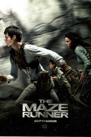 The Maze Runner 800x1200