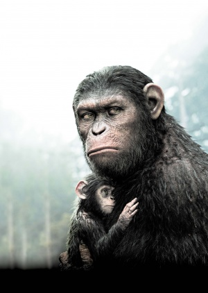 Dawn of the Planet of the Apes 3552x5000