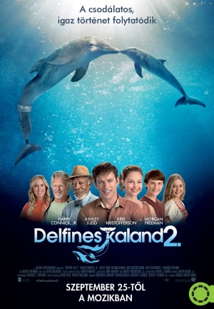 Dolphin Tale 2 800x1154