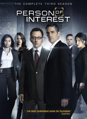 Person of Interest 1010x1381