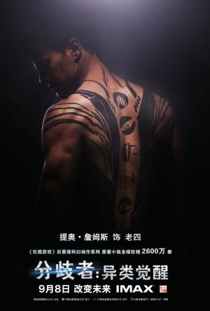 Divergent 1000x1480