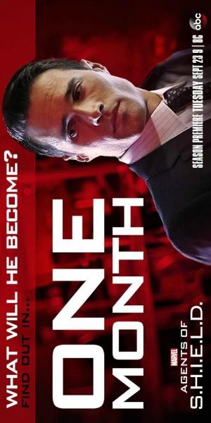 Agents of S.H.I.E.L.D. 512x1024