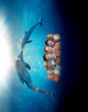 Dolphin Tale 2 3929x5000