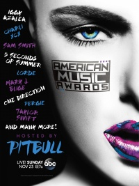 American Music Awards 2014 poster