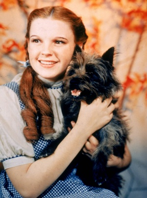 The Wizard of Oz 1566x2112