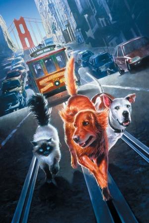 Homeward Bound II: Lost in San Francisco 1417x2126