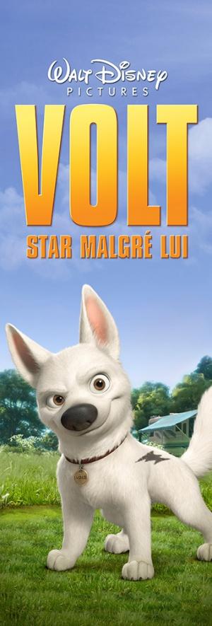 Bolt: Ein Hund für alle Fälle 339x1000