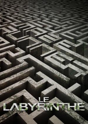 The Maze Runner 2400x3400