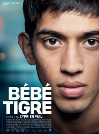 Bébé tigre poster