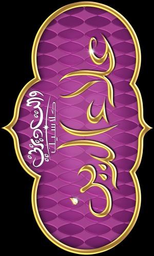 Aladdin 2883x4798