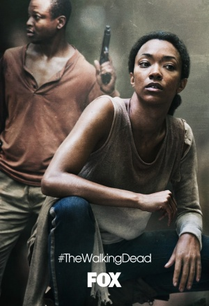 The Walking Dead 820x1200