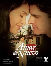 Amar de Nuevo poster