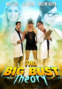 The Big Bust Theory poster