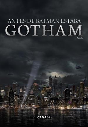 Gotham 2399x3475