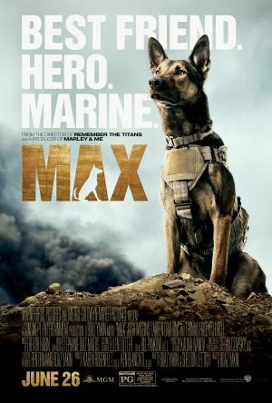 Max 3375x5000