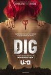Dig poster
