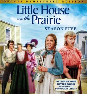 Little House on the Prairie 3021x3248