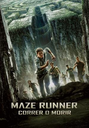 The Maze Runner 500x724
