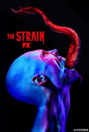 The Strain 800x1185