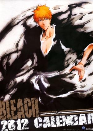 Bleach 2830x4000