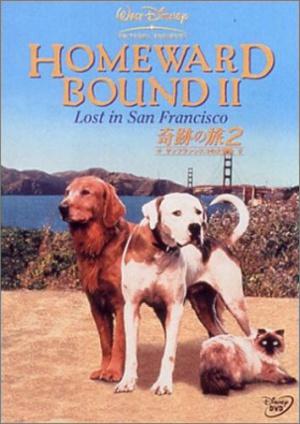 Homeward Bound II: Lost in San Francisco 354x500