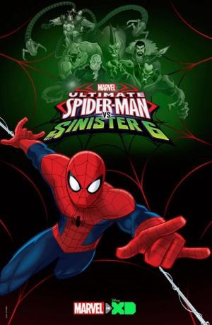 Der ultimative Spider-Man 492x755