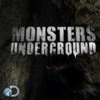 Monsters Underground poster