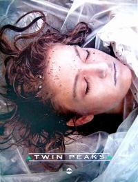Das Geheimnis von Twin Peaks poster