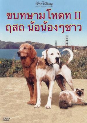 Homeward Bound II: Lost in San Francisco 2035x2893