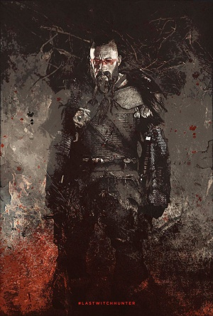 The Last Witch Hunter 1382x2048