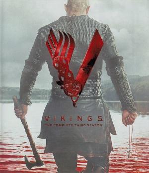 Vikings 3019x3502