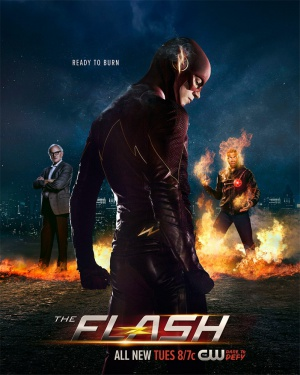 The Flash 799x1000