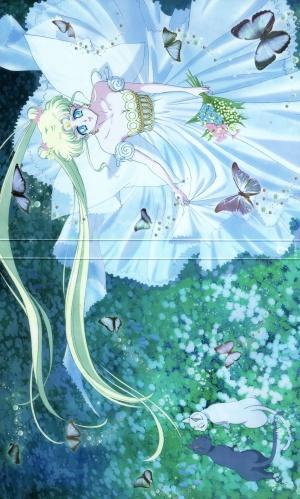 Bishôjo senshi Sêrâ Mûn Crystal 2000x3324