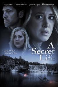 His Secret Family poster