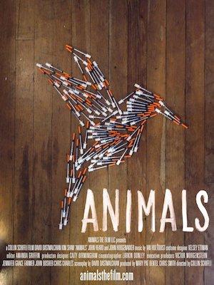 Animals 1536x2048
