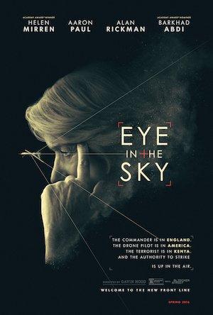 Eye in the Sky 3375x5000