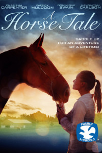 A Horse Tail poster