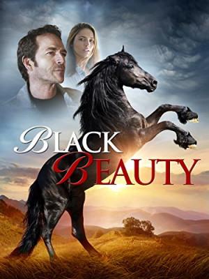 Black Beauty 375x500