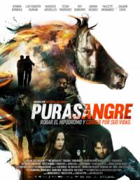 Purasangre poster
