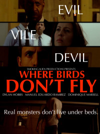 Where Birds Don't Fly poster