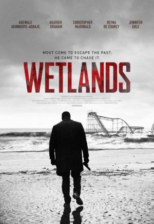 Wetlands 742x1080