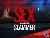 Sex Sent Me to the Slammer poster