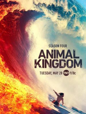 Animal Kingdom 700x925
