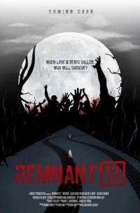 Remnant 13 poster