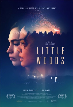 Little Woods 417x614