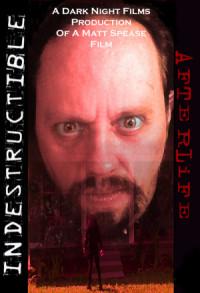 Indestructible: Afterlife poster