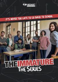 Immaturi - La serie poster